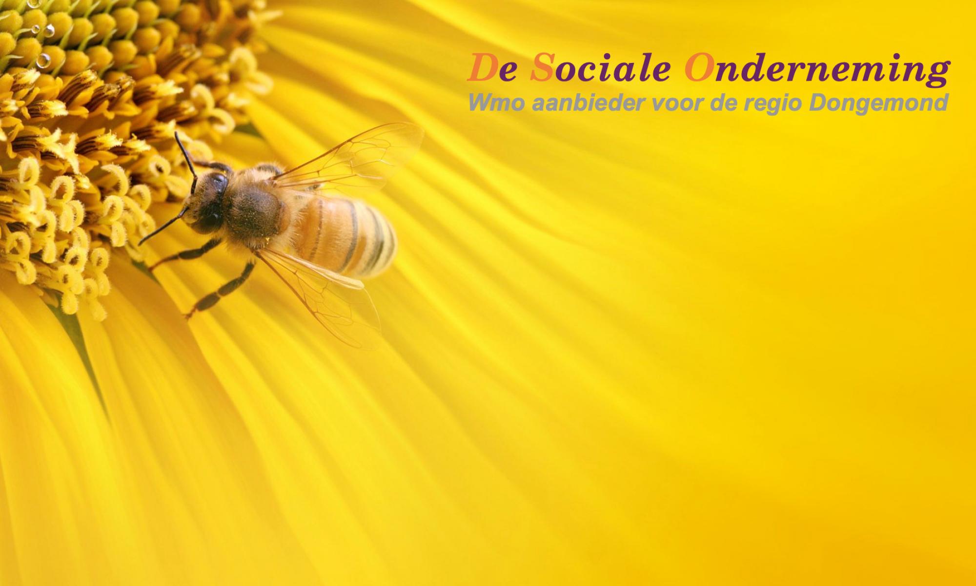 De Sociale Onderneming bv